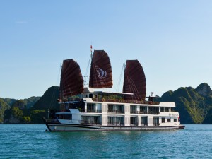 Pelican Cruise: From 140 USD/ pax